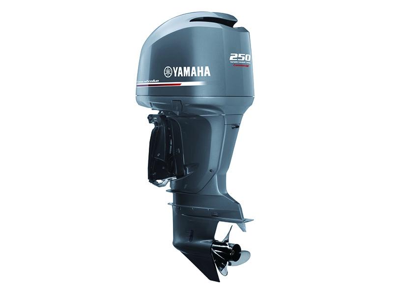 YAMAHA - F250HETX/FL250HETX